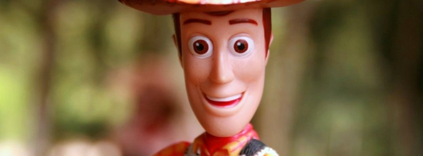 Woody Toy Wide